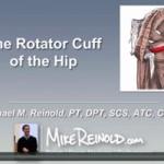 Hip Rotator Cuff