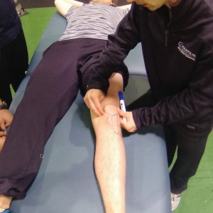 3 Tips for Assessing the Patellofemoral Joint